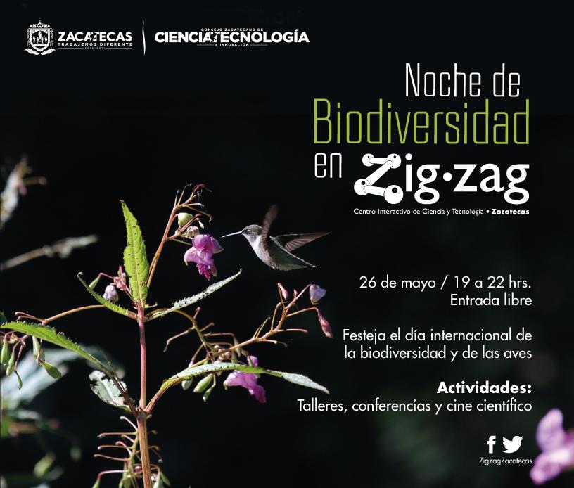 Noche de Biodiversidad en Zigzag