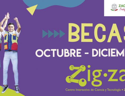 Becas Zigzag Septiembre – Diciembre 2020